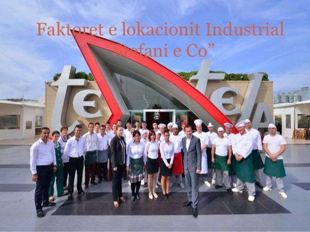 "Faktoret e lokacionit Industrial ""Stefani e Co"""
