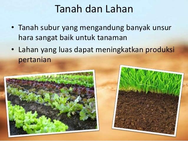 Faktor Produksi Pertanian Pengantar Ilmu Pertanian