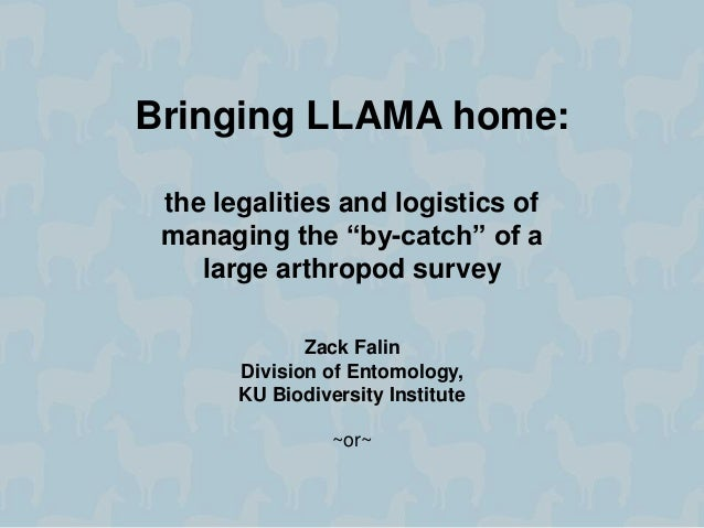 "Bringing LLAMA home: the legalities and logistics of managing the ""by-catch"" of a large arthropod survey Zack Falin Divisi..."