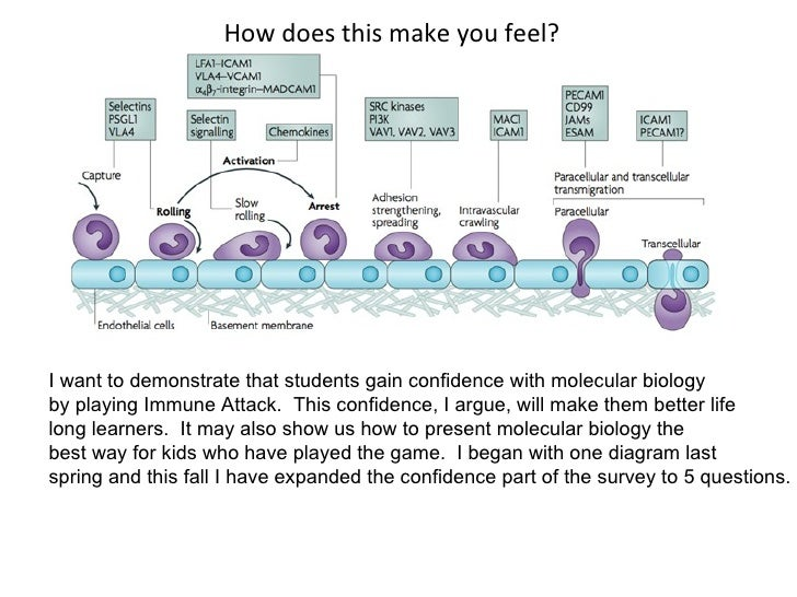 How does this make you feel? I want to demonstrate that students gain confidence with molecular biology by playing Immune ...
