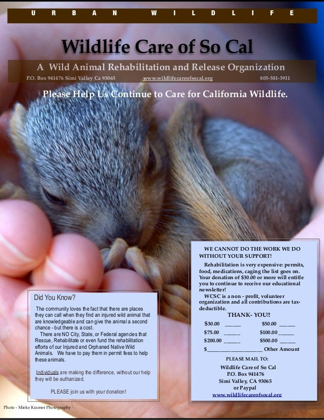 Help us continue to care for California wildlife.
