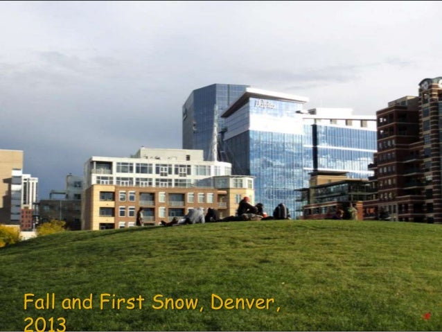 Fall and First Snow, Denver,