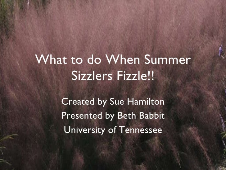 What to do When Summer Sizzlers Fizzle!! Created by Sue Hamilton Presented by Beth Babbit University of Tennessee