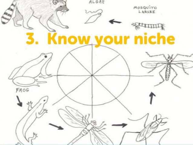 3. Know your niche