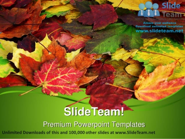 Fall leaves nature power point templates themes and backgrounds ppt d premium powerpoint templates toneelgroepblik Gallery