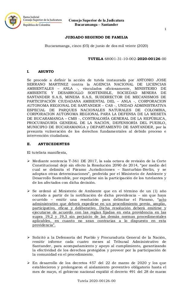 Consejo Superior de la Judicatura Bucaramanga – Santander 1 Tutela 2020-00126-00 JUZGADO SEGUNDO DE FAMILIA Bucaramanga, c...