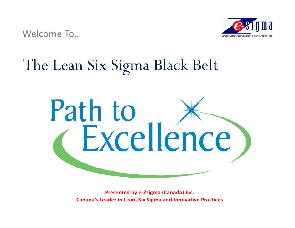 Black Belt - Path To Excellence