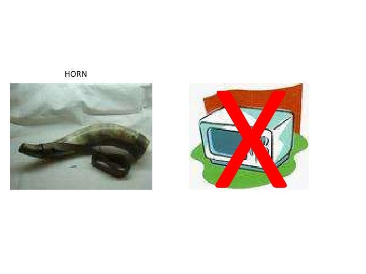 X<br />HORN<br />