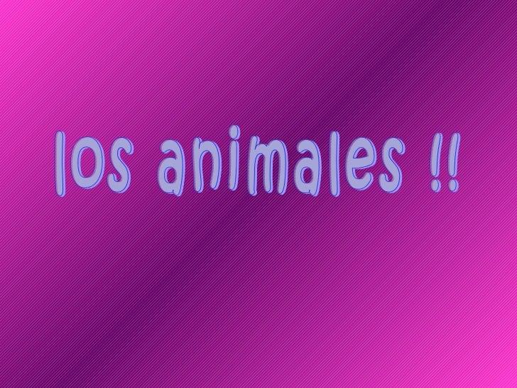 los animales !!