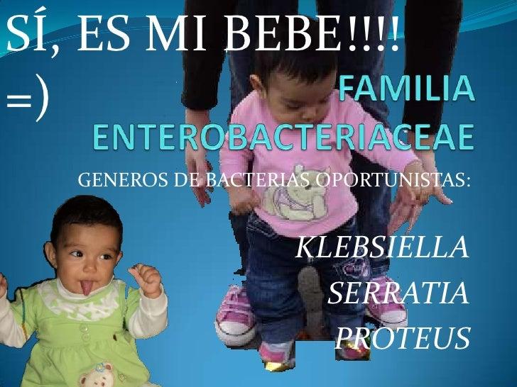 SÍ, ES MI BEBE!!!!=)   GENEROS DE BACTERIAS OPORTUNISTAS:                     KLEBSIELLA                       SERRATIA   ...