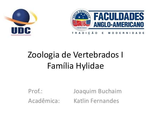 Zoologia de Vertebrados I Família Hylidae Prof.: Joaquim Buchaim Acadêmica: Katlin Fernandes