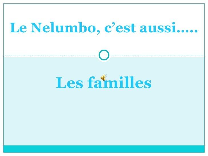 Le Nelumbo, c'est aussi….. Les familles