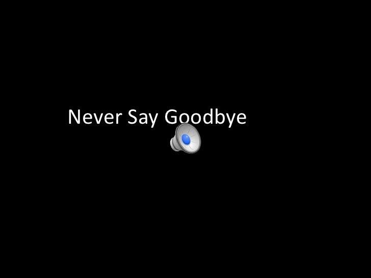 Never Say Goodbye<br />