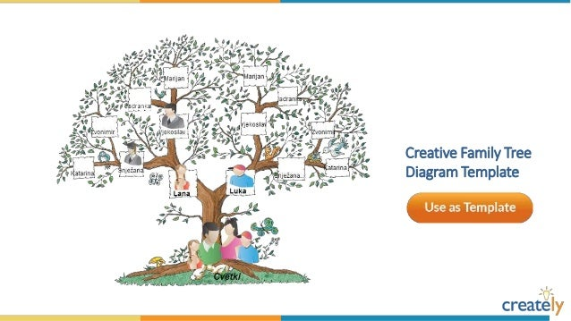 Tree Diagram Template Activity Great Installation Of Wiring Diagram