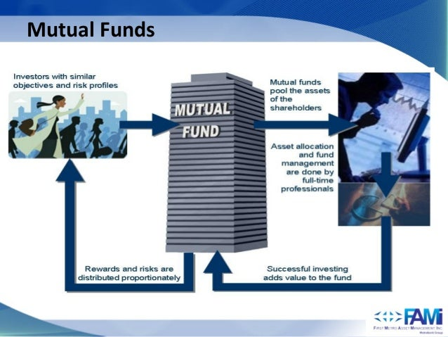 Fami save and learn equity fund
