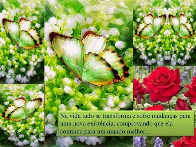 Na vida tudo se transforma e sofre mudanças para uma nova existência, comprovando que ela continua para um mundo melhor...