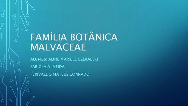 FAMÍLIA BOTÂNICA MALVACEAE ALUNOS: ALINE MARIELE CZEKALSKI FABIOLA ALMEIDA PERIVALDO MATEUS CONRADO