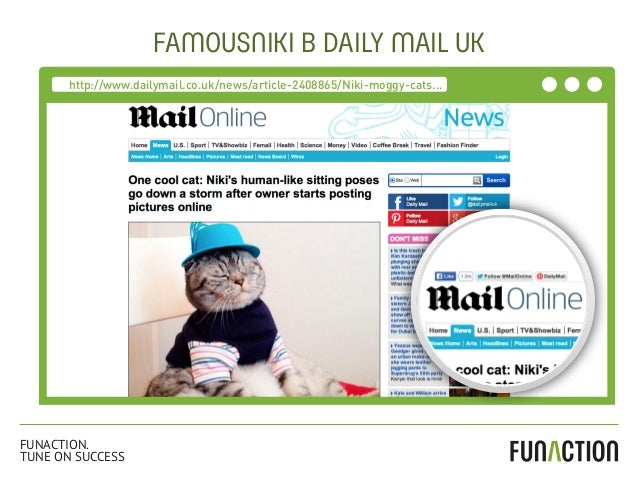 FAMOUSNIKI В DAILY MAIL UK http://www.dailymail.co.uk/news/article-2408865/Niki-moggy-cats... FUNACTION. TUNE ON SUCCESS