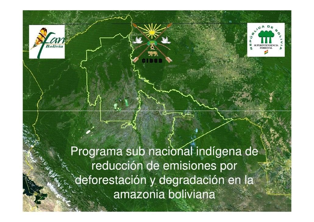 Programa sub nacional indígena de     reducción de emisiones por  deforestación y degradación en la         amazonia boliv...
