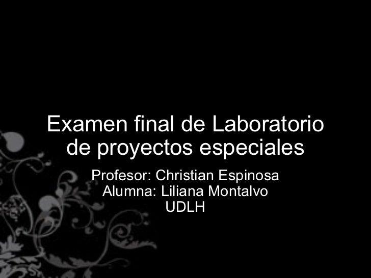 Examen final de Laboratorio de proyectos especiales Profesor: Christian Espinosa Alumna: Liliana Montalvo UDLH