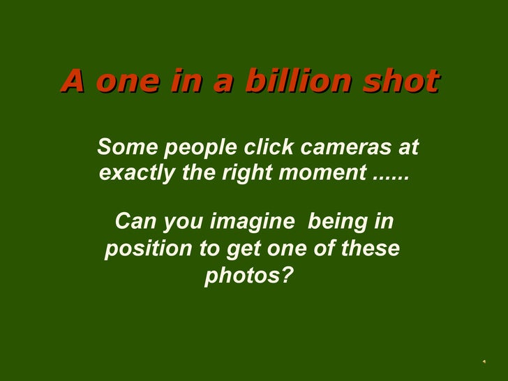A one in a billion shot Some people click cameras at exactly the right moment ...... Can you imagine  being in position to...