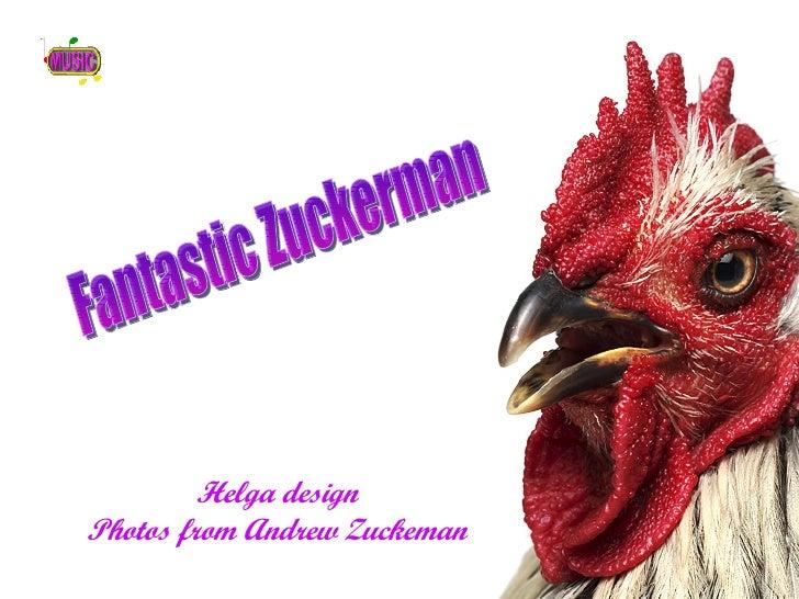 Helga design Photos from Andrew Zuckeman Fantastic Zuckerman