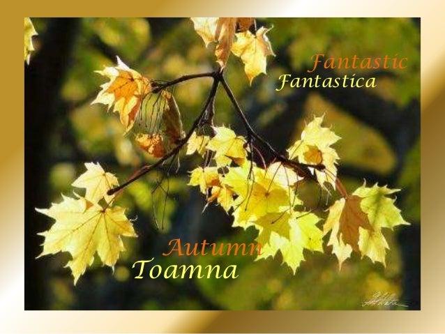 Fantastic          Fantastica AutumnToamna