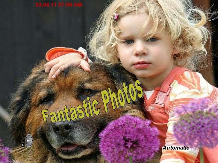 Fantastic Photos Automatic 03.04.11   07:08 AM