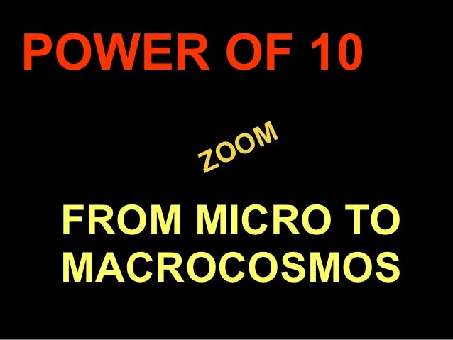 POWER OF 10             M          ZOO     FROM MICRO TO     MACROCOSMOS.