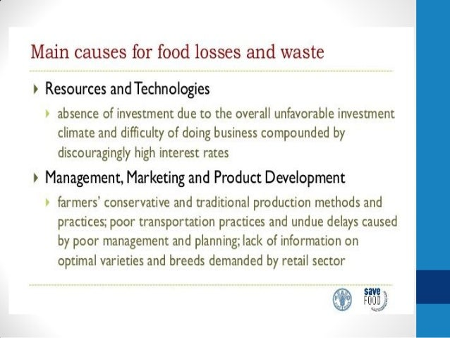 Save Food Global Initiative For Food Loss And Waste