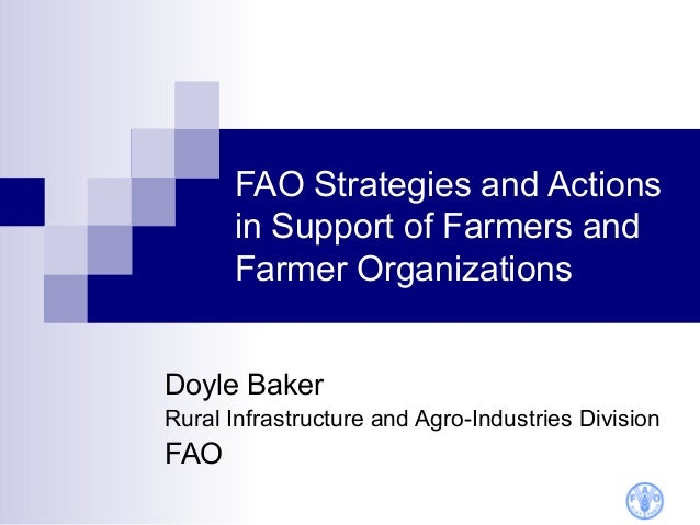 FAO Strategies and Actions      in Support of Farmers and      Farmer OrganizationsDoyle BakerRural Infrastructure and Agr...