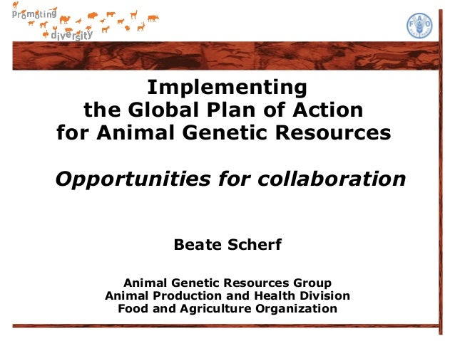 Implementing  the Global Plan of Actionfor Animal Genetic ResourcesOpportunities for collaboration              Beate Sche...
