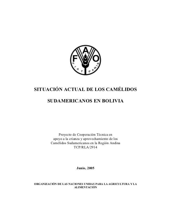 SITUACIÓN ACTUAL DE LOS CAMÉLIDOS       SUDAMERICANOS EN BOLIVIA             Proyecto de Cooperación Técnica en          a...
