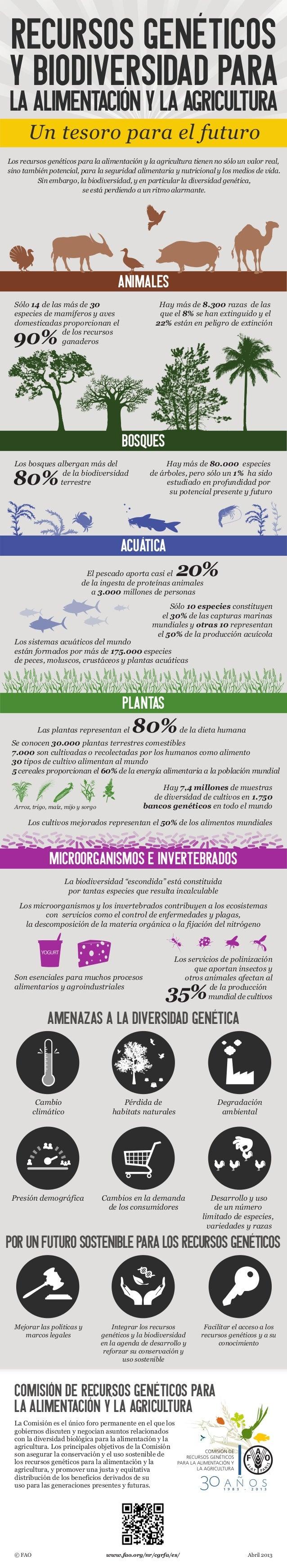 AMENAZAS A LA DIVERSIDAD GENÉTICA Un tesoro para el futuro Los recursos genéticos para la alimentación y la agricultura ti...