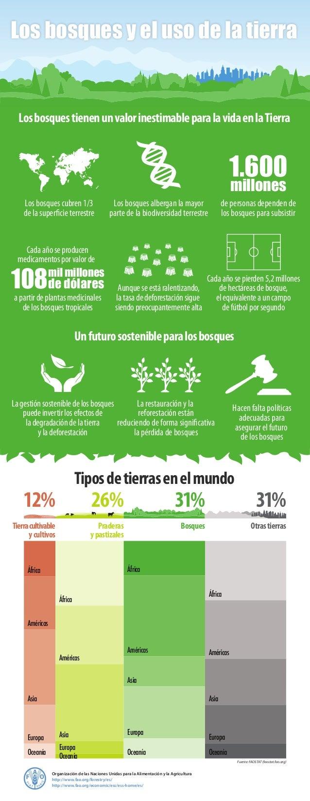Organización de las Naciones Unidas para la Alimentación y la Agricultura http://www.fao.org/forestry/es/ http://www.fao.o...