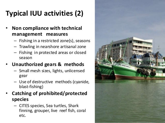 State of world fisheries and international fight against for How much does it cost to get a fishing license