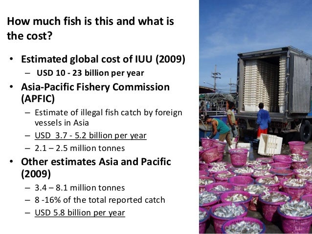 State of world fisheries and international fight against for How much does a fishing license cost
