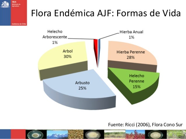Flora Endémica AJF: Formas de VidaFuente: Ricci (2006), Flora Cono Sur