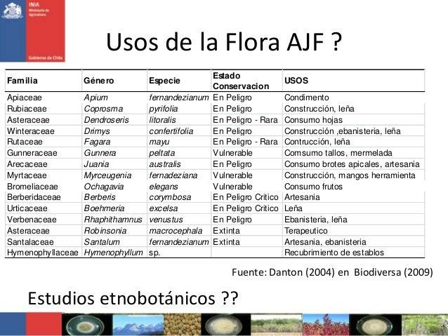 Usos de la Flora AJF ?Familia Género EspecieEstadoConservacionUSOSApiaceae Apium fernandezianum En Peligro CondimentoRubia...