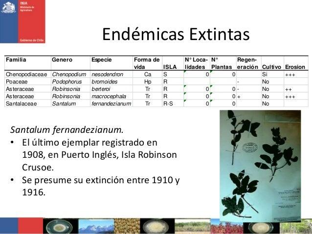 Endémicas ExtintasFamilia Genero Especie Forma devida ISLAN° Loca-lidadesN°PlantasRegen-eración Cultivo ErosionChenopodiac...