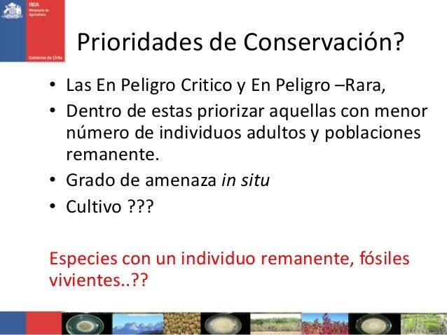 Prioridades de Conservación?• Las En Peligro Critico y En Peligro –Rara,• Dentro de estas priorizar aquellas con menornúme...