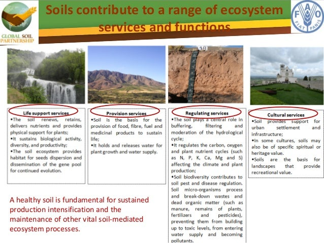 Sustainable soil management pillar 1 of the global soil for Soil use and management