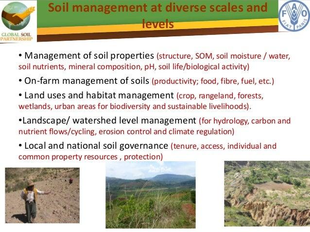 Sustainable soil management pillar 1 of the global soil for Soil management