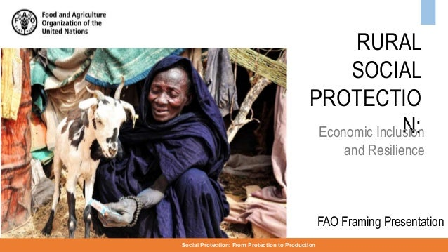 RURAL SOCIAL PROTECTIO N: Social Protection: From Protection to Production FAO Framing Presentation Economic Inclusion and...