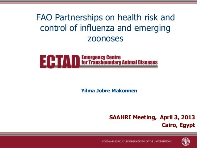 FAO Partnerships on health risk and control of influenza and emerging              zoonoses           Yilma Jobre Makonnen...