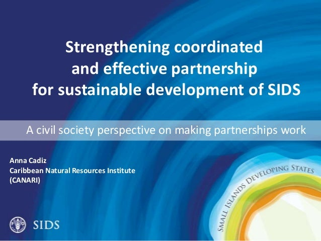 Strengthening coordinated and effective partnership for sustainable development of SIDS A civil society perspective on mak...