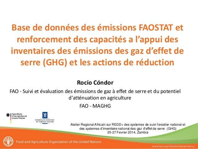 Base de données des émissions FAOSTAT et renforcement des capacités a l'appui des inventaires des émissions des gaz d'effe...