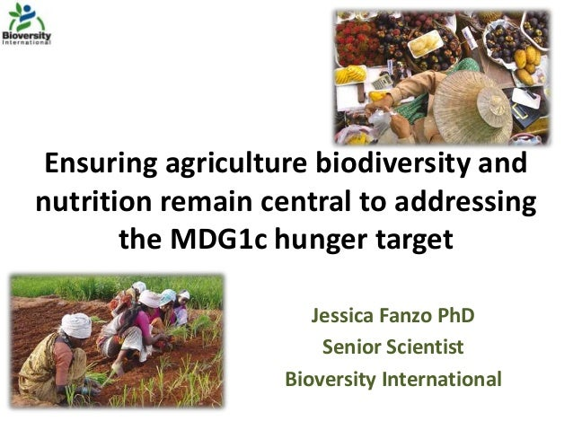 Ensuring agriculture biodiversity and nutrition remain central to addressing the MDG1c hunger target Jessica Fanzo PhD Sen...