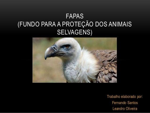 Trabalho elaborado por: Fernando Santos Leandro Oliveira FAPAS (FUNDO PARA A PROTEÇÃO DOS ANIMAIS SELVAGENS)