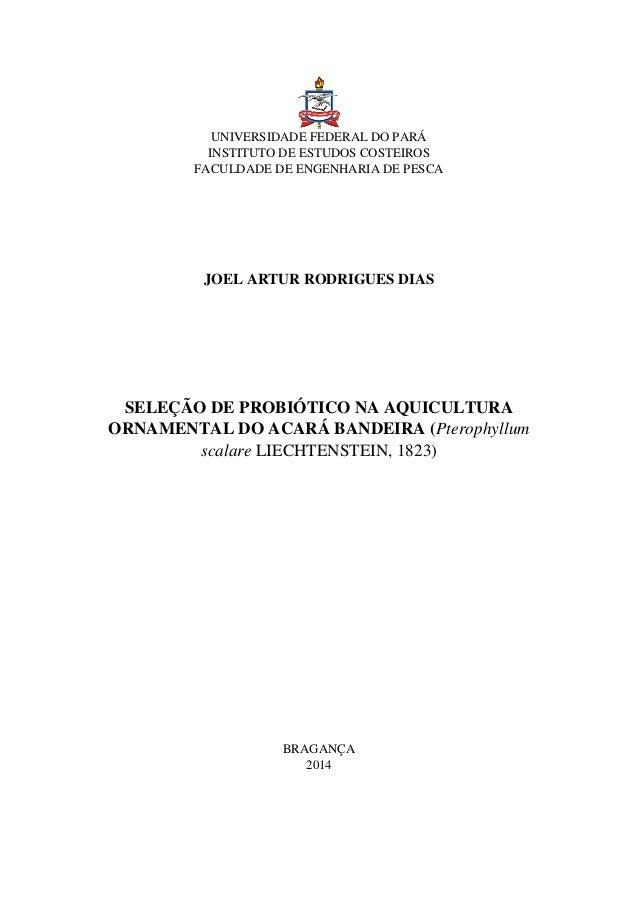 UNIVERSIDADE FEDERAL DO PARÁ INSTITUTO DE ESTUDOS COSTEIROS FACULDADE DE ENGENHARIA DE PESCA JOEL ARTUR RODRIGUES DIAS SEL...